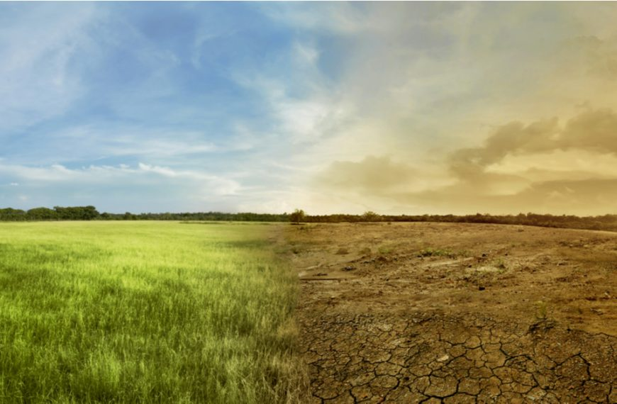 Climate Change: Preparing For The Climate Of The Future